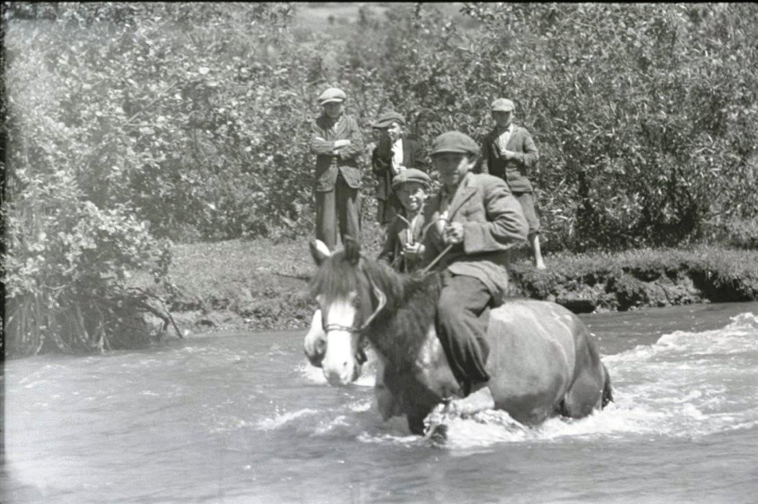Мальчики верхом на лошадях