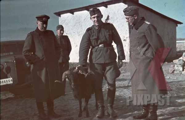 stock-photo-german-soldiers-kar98-rifle-staff-car-ukraine-village-1942-goat-7954.jpg