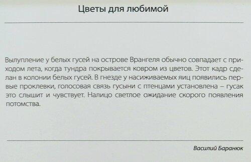 https://img-fotki.yandex.ru/get/242441/140132613.52e/0_21446b_ffe02a7a_L.jpg