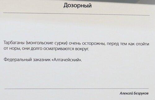 https://img-fotki.yandex.ru/get/242441/140132613.532/0_214894_b04db137_L.jpg
