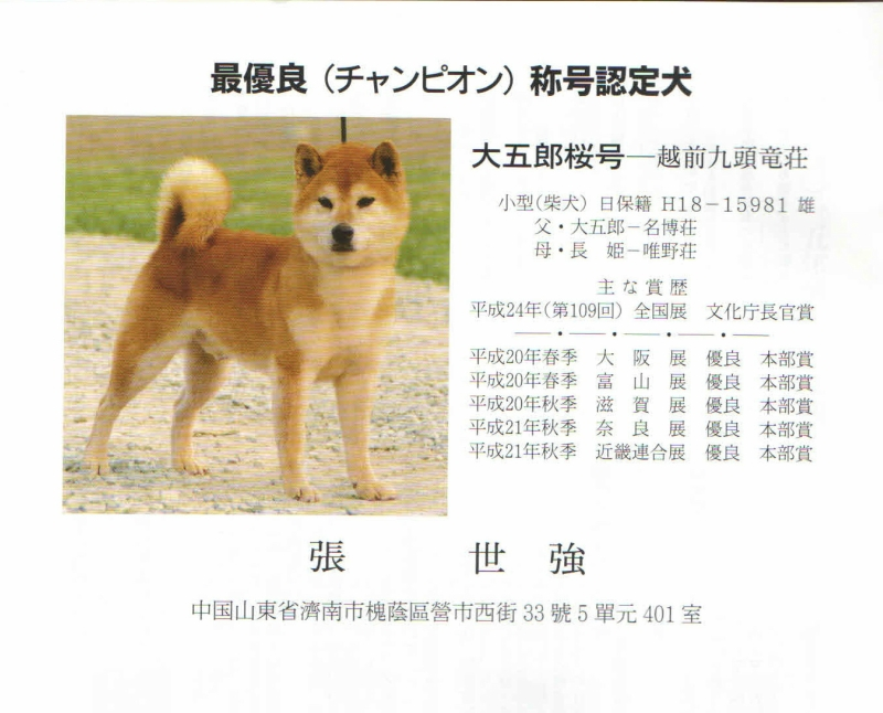 Daigoro Zakura Go (2).jpg