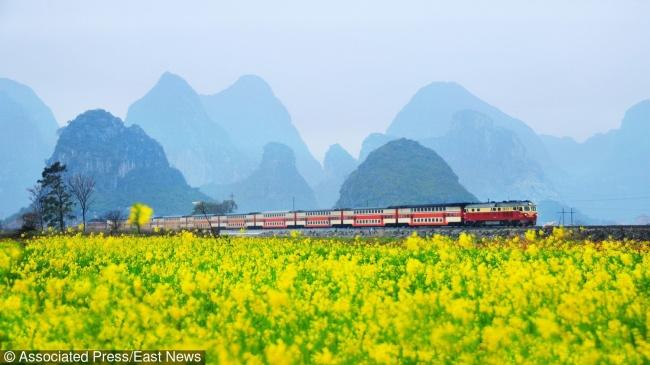 © Eastnews  Пассажирский поезд среди цветущего рапса, окрестности города Гуйлинь Ида, постель