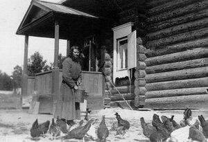 Монах-птичник Коневского Рождественского монастыря кормит кур.