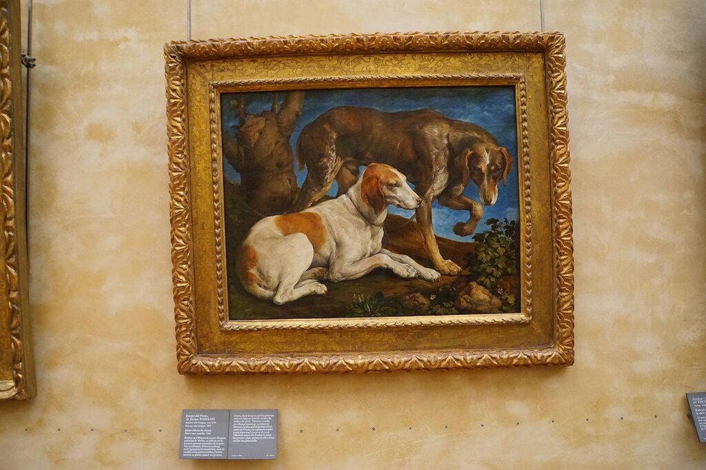 Якопо Бассано. Две охотничьи собаки, привязанные ко пню