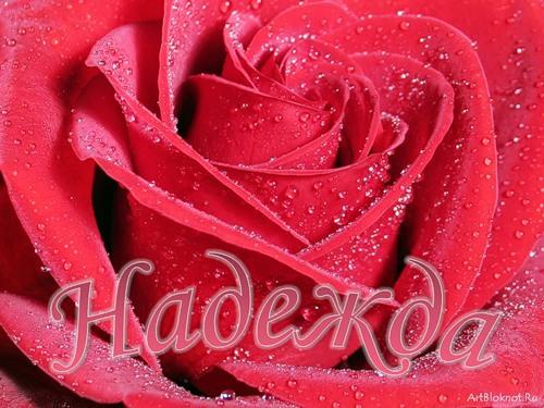 С Днем ангела, Надежда! Роза