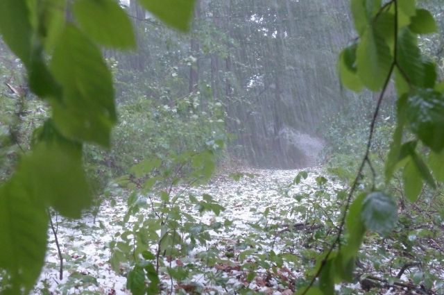 Всеверной столице выпал июльский снег— Лето налыжах
