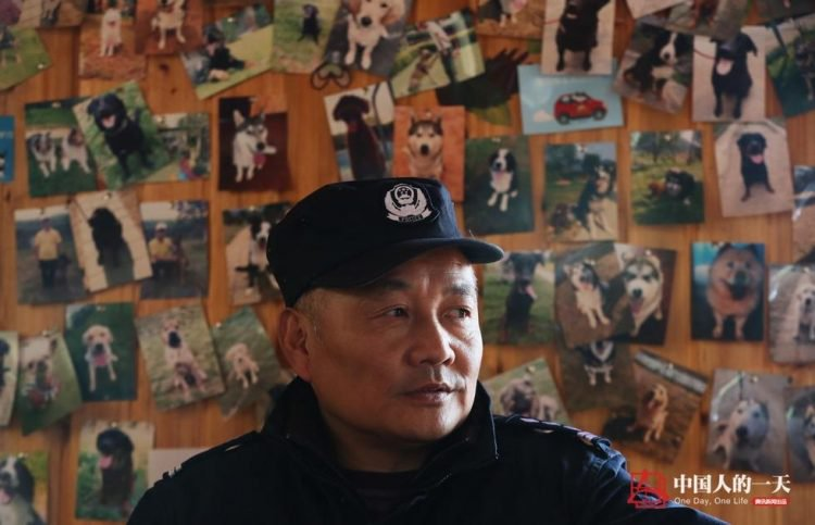 Достойная старость служебных собак: китайский кинолог открыл приют для собак-пенсионеров (5 фото)