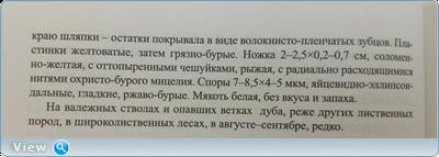 0_184f8a_18c56160_orig.png
