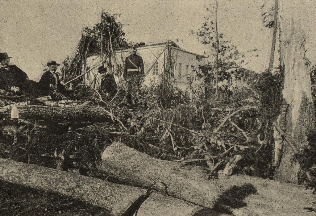 111182 Голофтеевский парк после урагана М.И. Грибов.jpg
