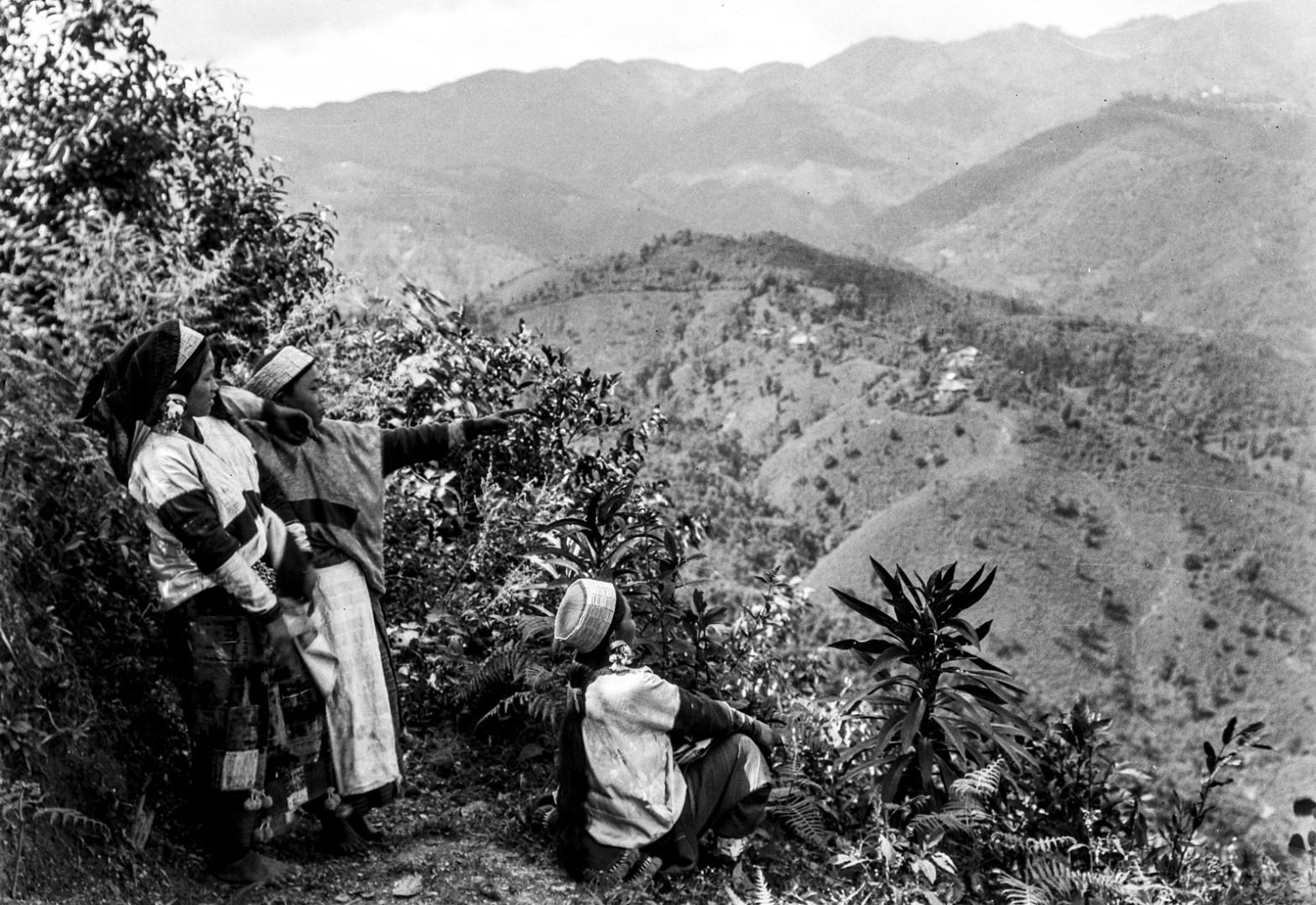 1003. Девушки на склоне горы