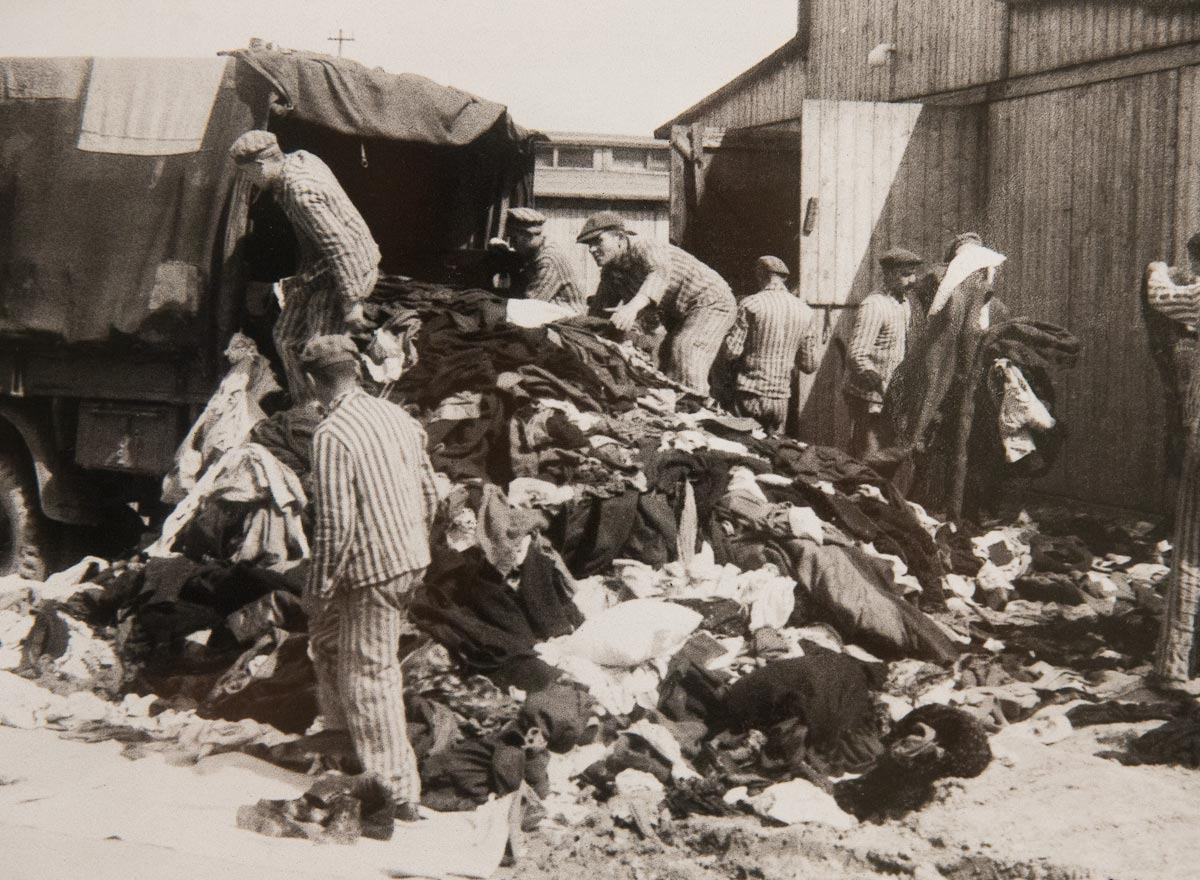 the extermination of the jews during the holocaust In january 1933, after a bitter ten-year political struggle, adolf hitler came to power in germany during his rise to power, hitler had repeatedly blamed the jews.