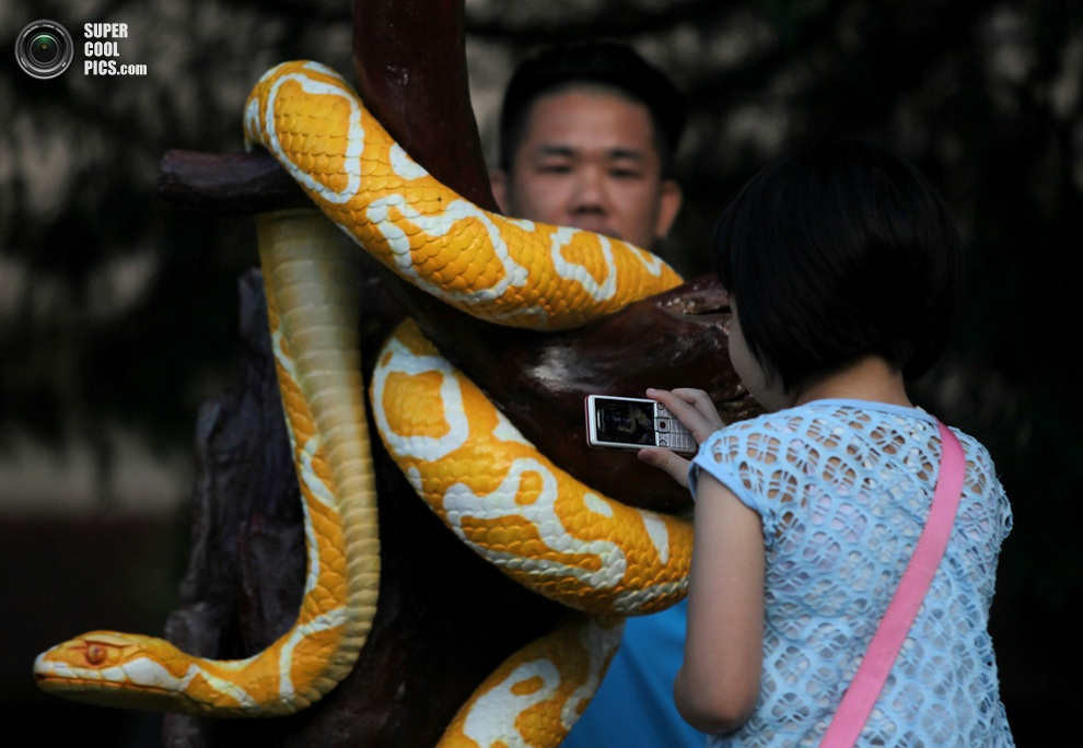 Этническая китаянка фотографирует скульптуру змеи в храме Тхеан-Хоу. (MOHD RASFAN/AFP/Getty Imag