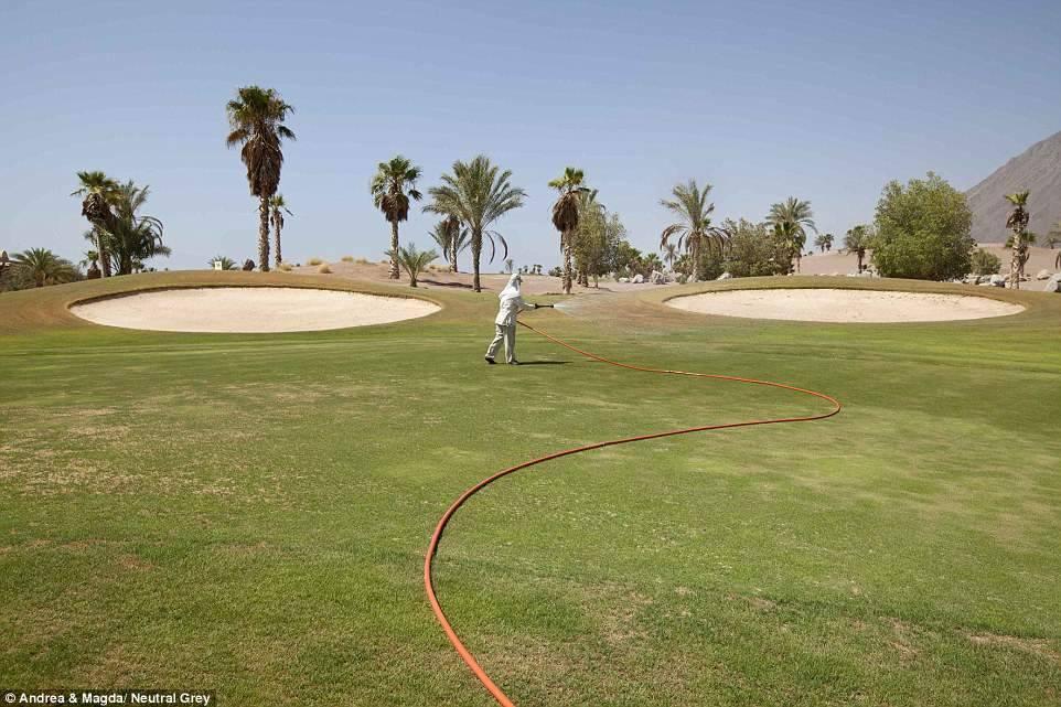 8. Пустое поле для гольфа.