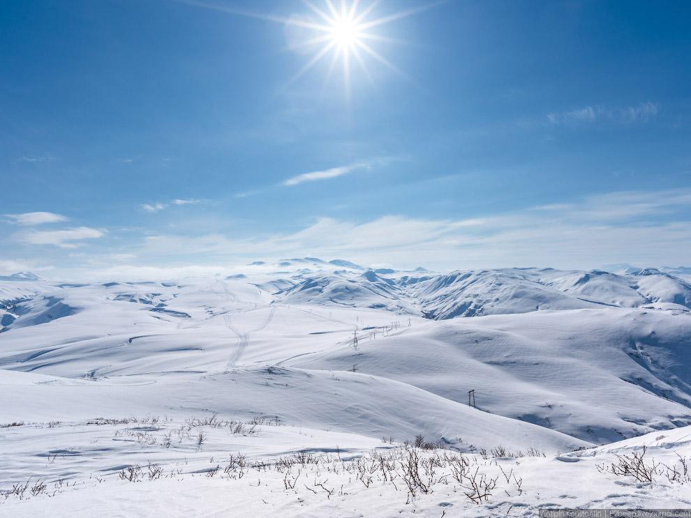19. Кустарник почти не засыпало снегом.
