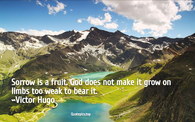 Sorrow is a fruit. God does not make it grow on limbs too weak to bear it. ~Victor Hugo