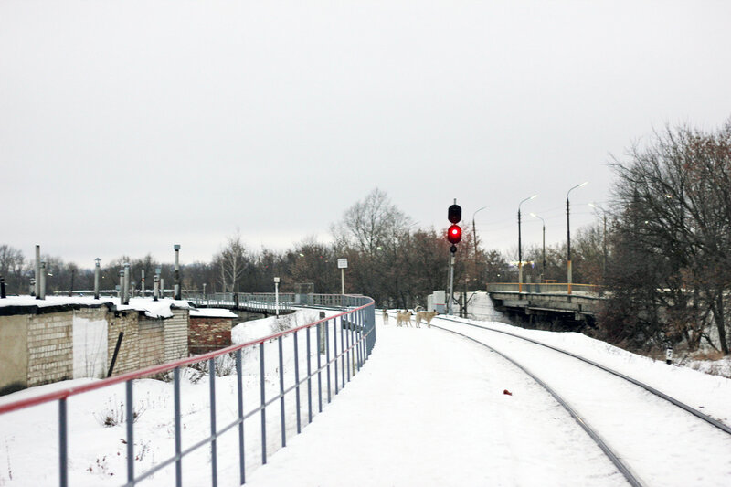 Платформа 5 км, перегон Кузьмичёвка - Орёл, вид на Орёл. Входной светофор ЧВ станции Орёл