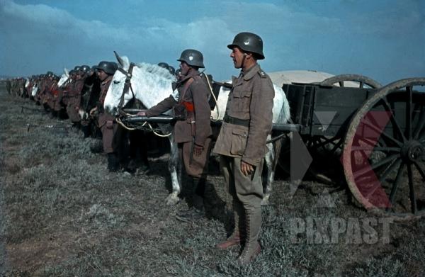 stock-photo-tunisian-volunteers-parade-for-erwin-rommel-in-tunisia-1943-freiwilligenbataillon-tunesien-12454.jpg