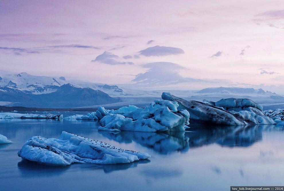 Молчаливое торжество природы.