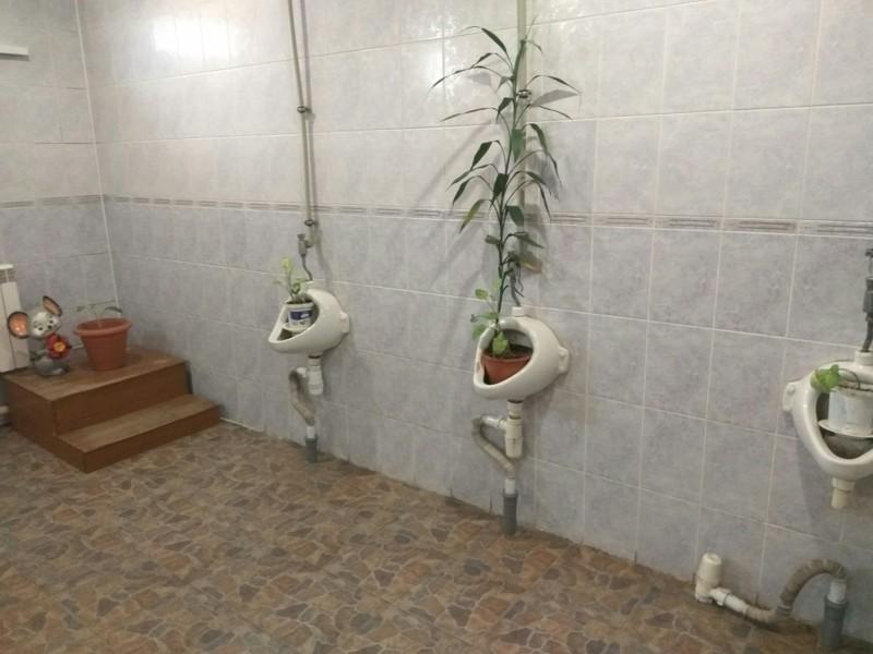 А мы вернемся к женским туалетам. Только посмотрите, что там происходит…