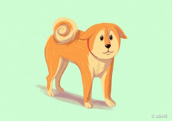 Это значит, что собака боится. Иногда упитомца может быть опущено только одно, чаще левое ухо. Так