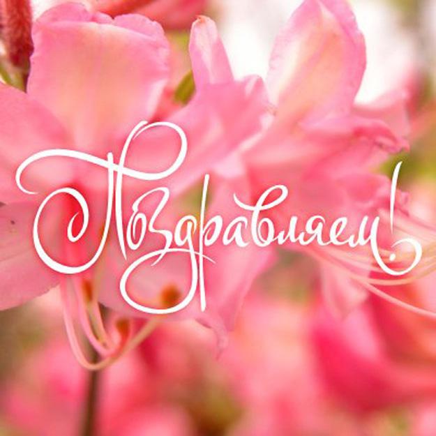 Открытки. С днем социального работника. Поздравляем! Надпись на фоне розовых цветов открытки фото рисунки картинки поздравления