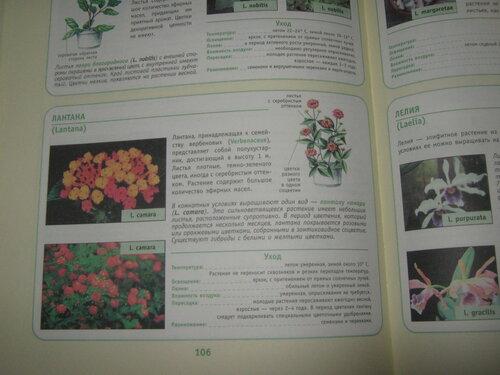 Записная книжка Натальи - Страница 5 0_1c2aa6_7a6074cd_L
