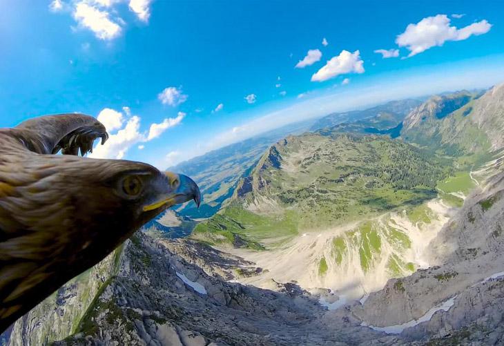 Летаем мы над горой Небельхорн высотой 2224 метра, которая находится около баварского города Об