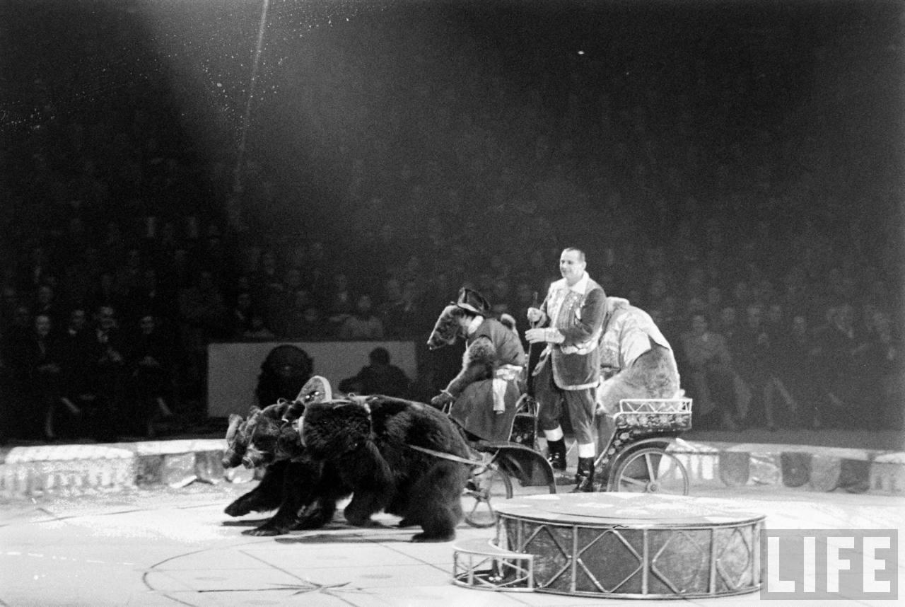 артисты цирка ссср фото защищает