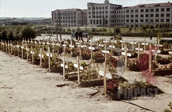 stock-photo-german-war-graves-in-minsk-belarus-russia-1941-by-franz-krieger-10740.jpg