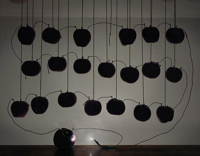 Battery with Hanging Apples, 2013