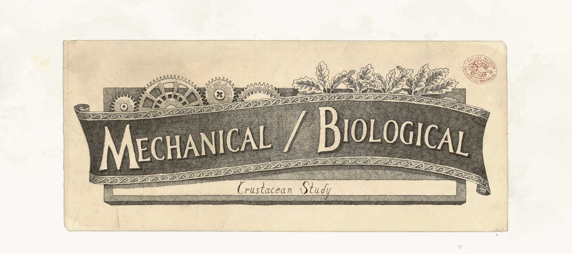 Mechanical Biology - Les illustrations de Steeven Salvat