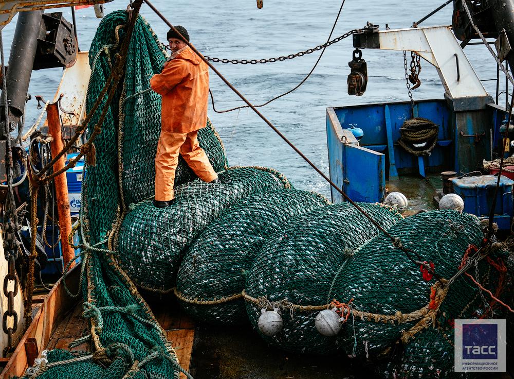 японские рыболовные компании