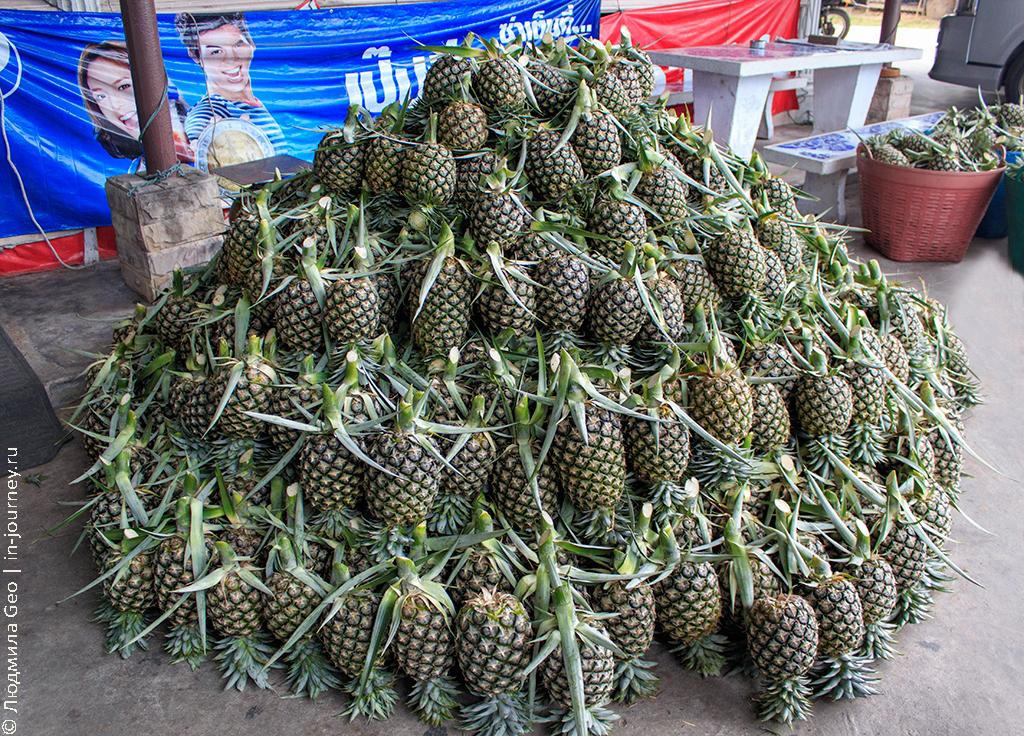ананасовая ферма