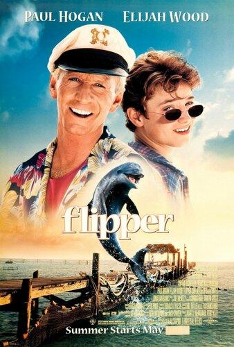 Flipper.jpg
