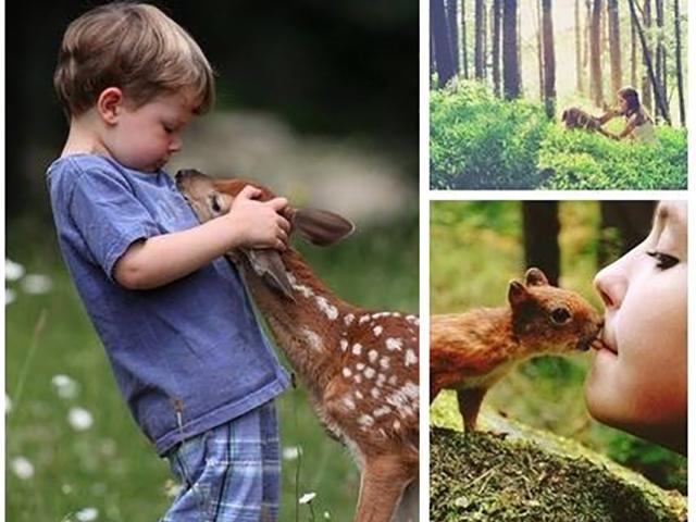 Что говорят дети о природе…