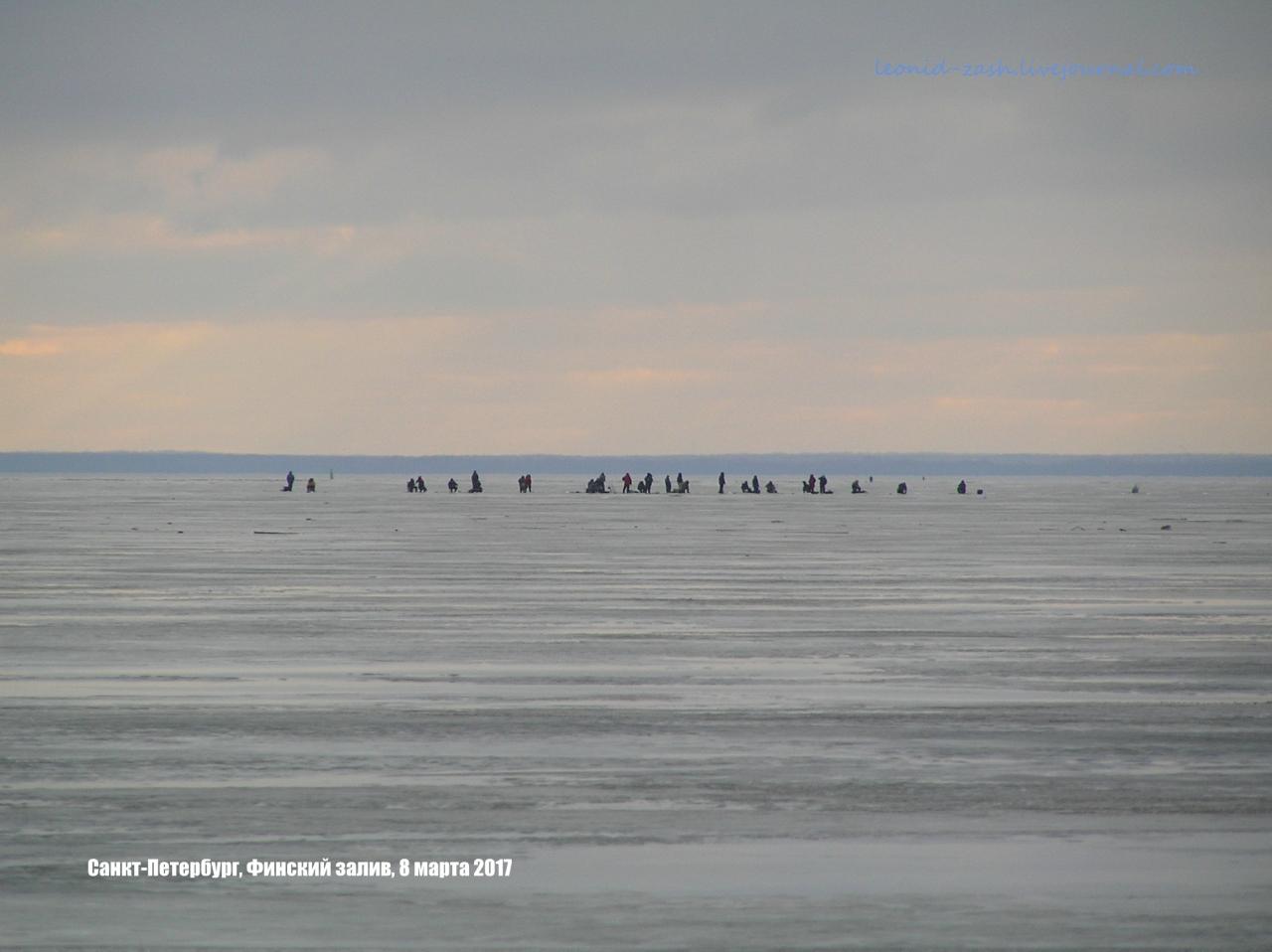 Финский залив 151.JPG