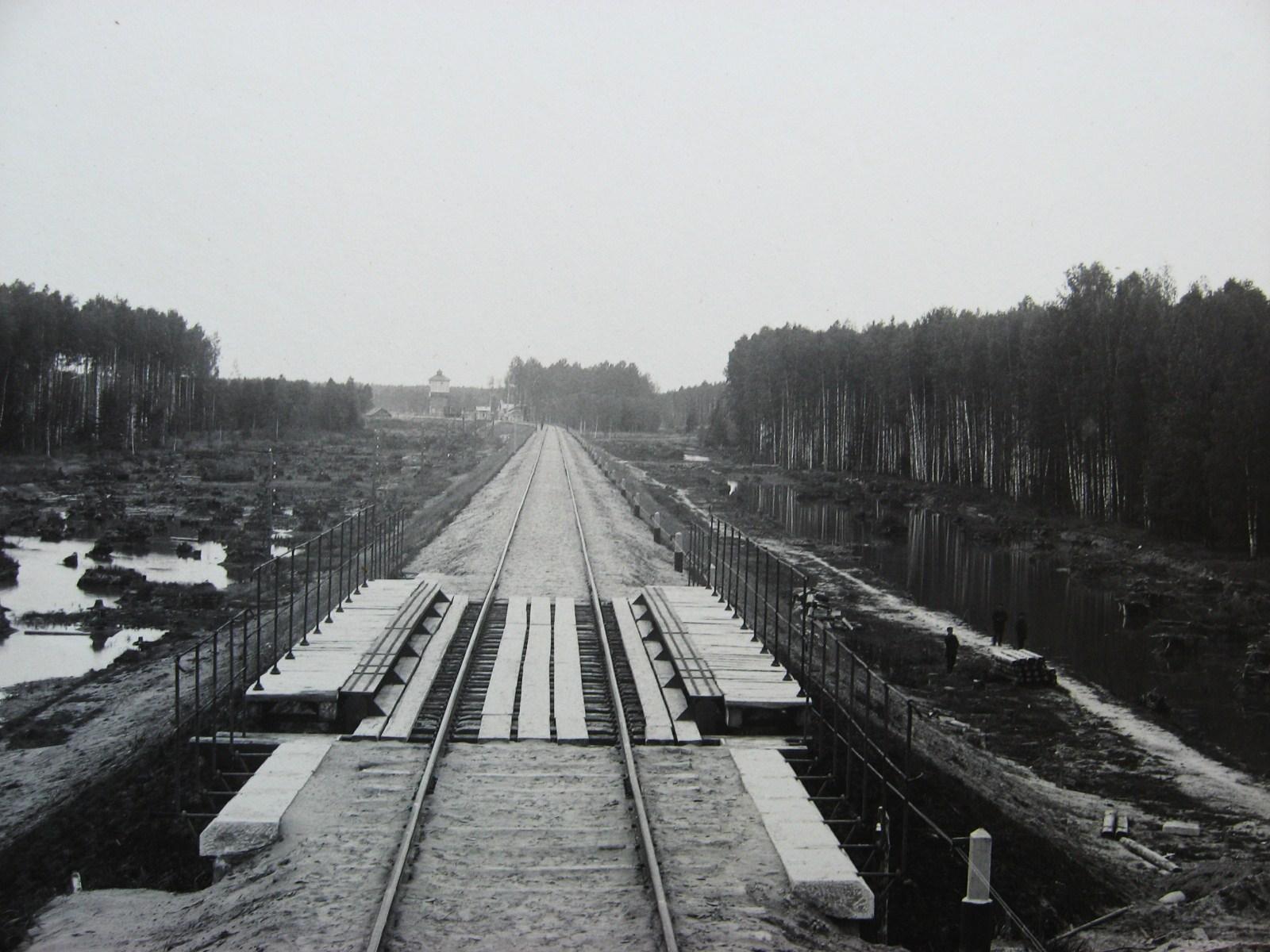 06. Вид на станцию Нечаевская со стороны Мурома