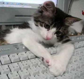 Открытки С днем программиста! Я тебе помогаю!