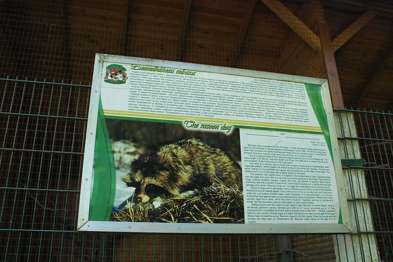 Очень удобно, что на каждом вольере есть огромный плакат с фотографией животного и описанием. Хотя б