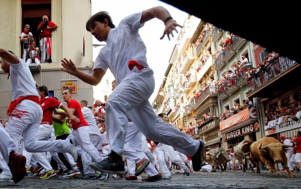 16. Попался на рог. (Фото Joseba Etxaburu | Reuters):