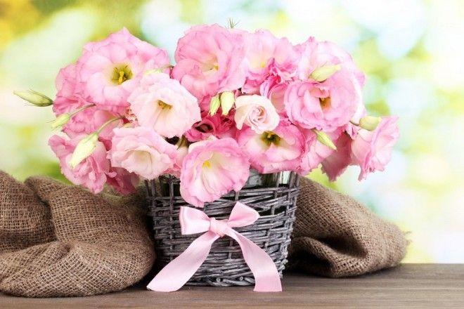 Запрет на использование четного количества цветов в подарочных букетах закрепился лишь на территории