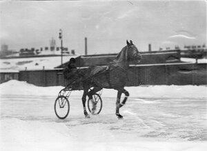 Рысак Крепыш (наездник В.Яковлев) на дорожке ипподрома на Семеновском плацу.