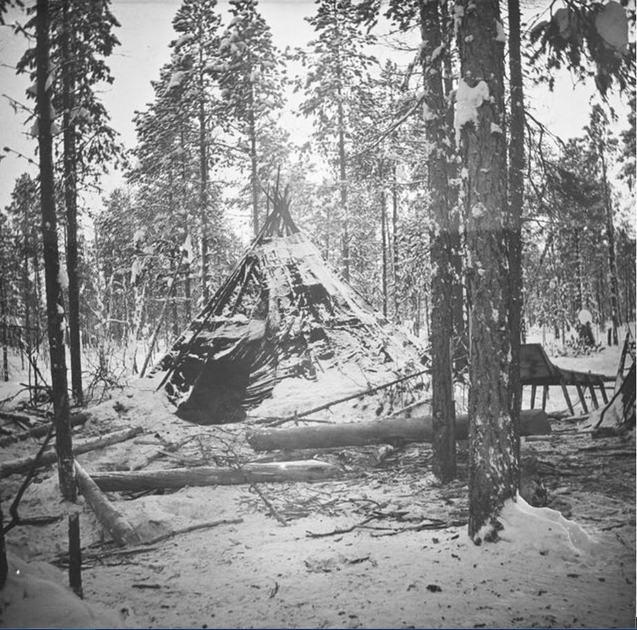 24. Самоедская хижина в лесу и нарты