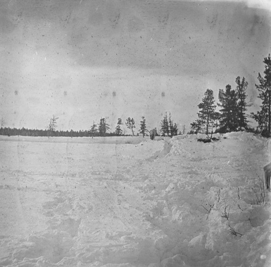 94. Пейзаж арктической тундры