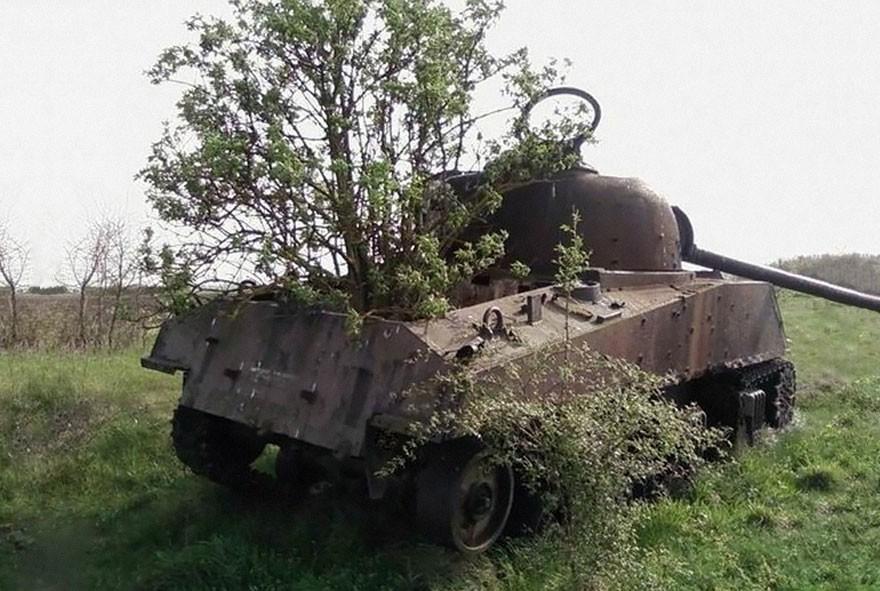 tank09.jpg
