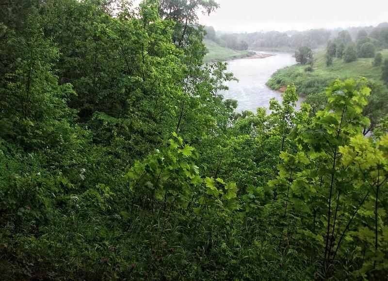 Дождь на Ловати. Июнь 2017