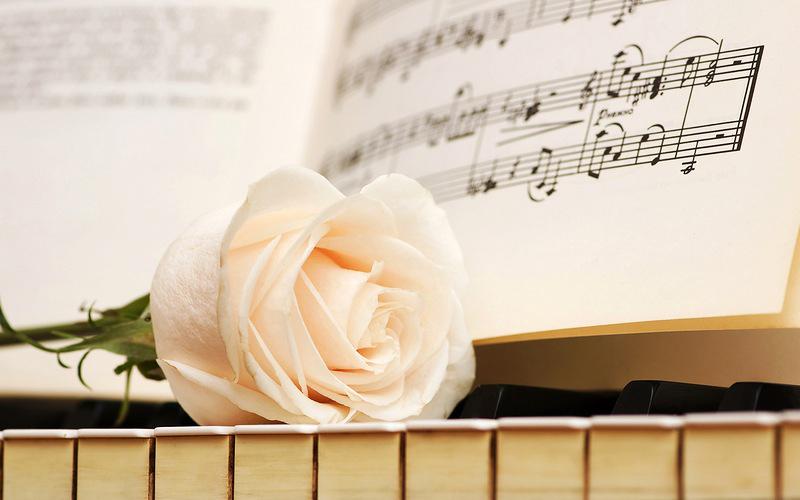 Открытки. День музыки. Белая роза