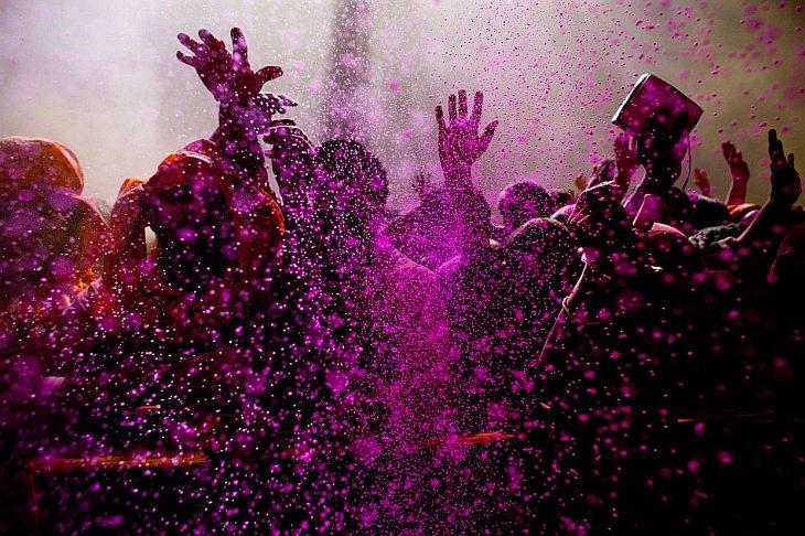 Жизнь в цвете: фиолетовый (19 фото)
