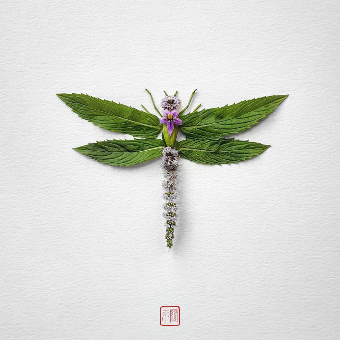Natura Insects - The delicate floral compositions of Raku Inoue