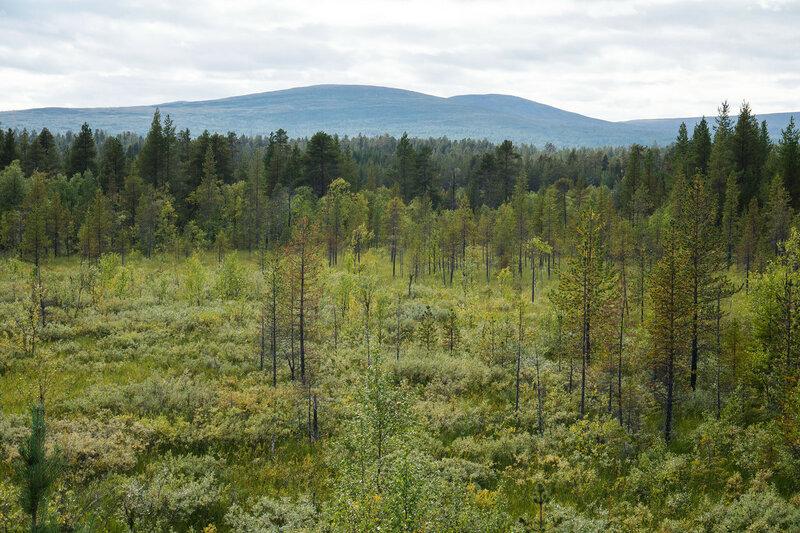 пейзаж с горами Паллас-Юлластунтури (Pallas-Yllästunturi) с шоссе 957